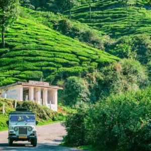 Get To Know Where All To Visit On Your Trip To Munnar