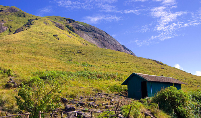 Welcome to God's Own Country! Places To Visit In Munnar