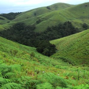 Adventure Parks In Munnar :  Awesome Thing For An Amazing Vacation