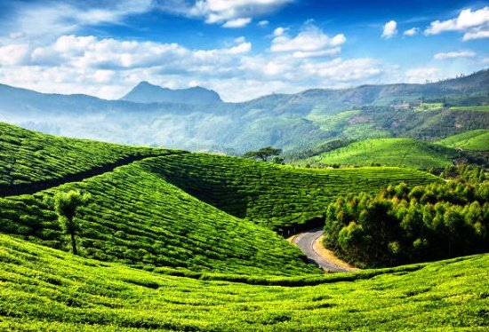 New Movies : Munnar  One of Top Shooting Location